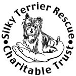 Silky Terrier Rescue                   Charitable Trust